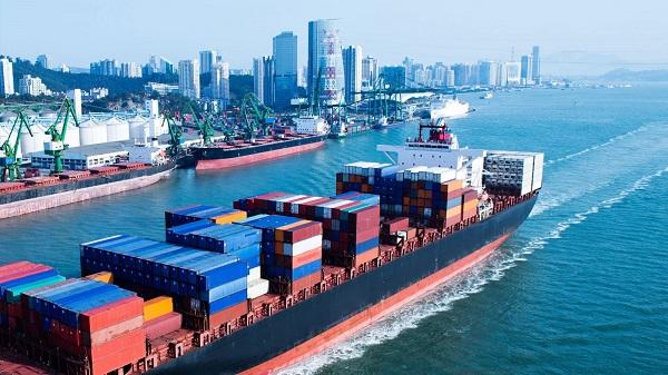 Công ty giao nhận xuất nhập khẩu thường cung cấp dịch vụ cho nhiều mặt hàng
